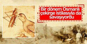 Osmanlı'nın çekirge istilasına karşı savaşı